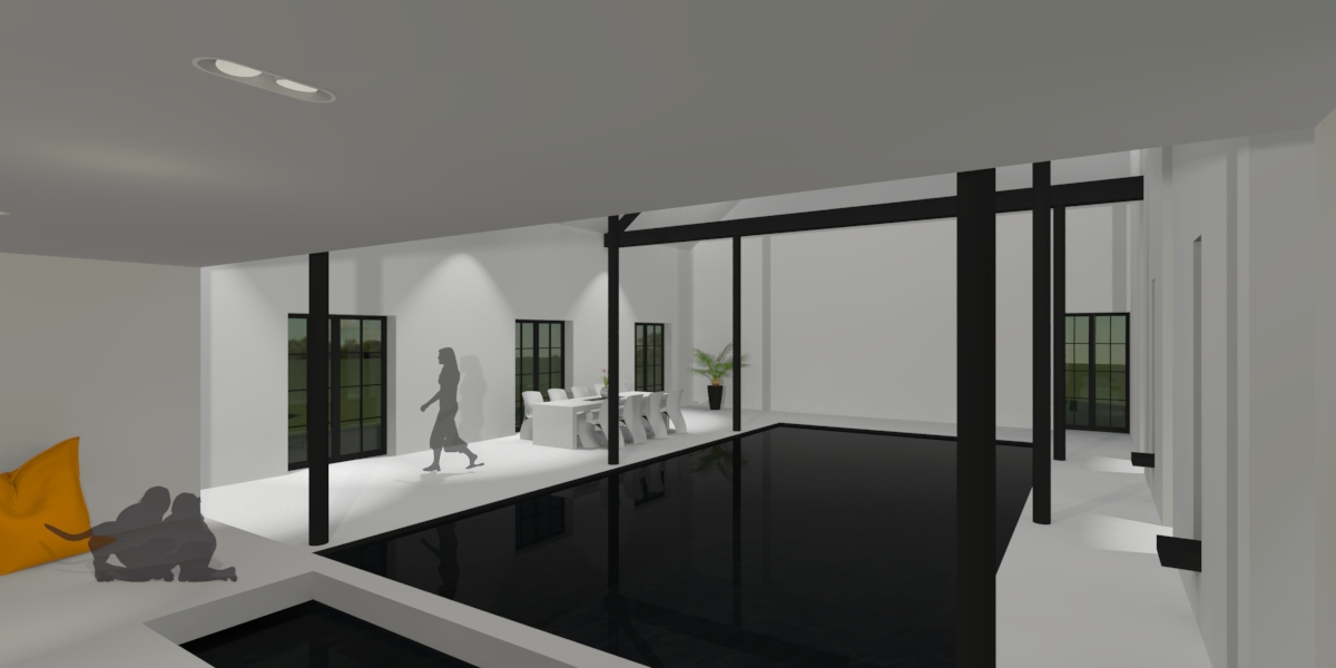 mgp-projet-bac-architects-renovation-ferme-piscine-lasne-black-swimming-pool